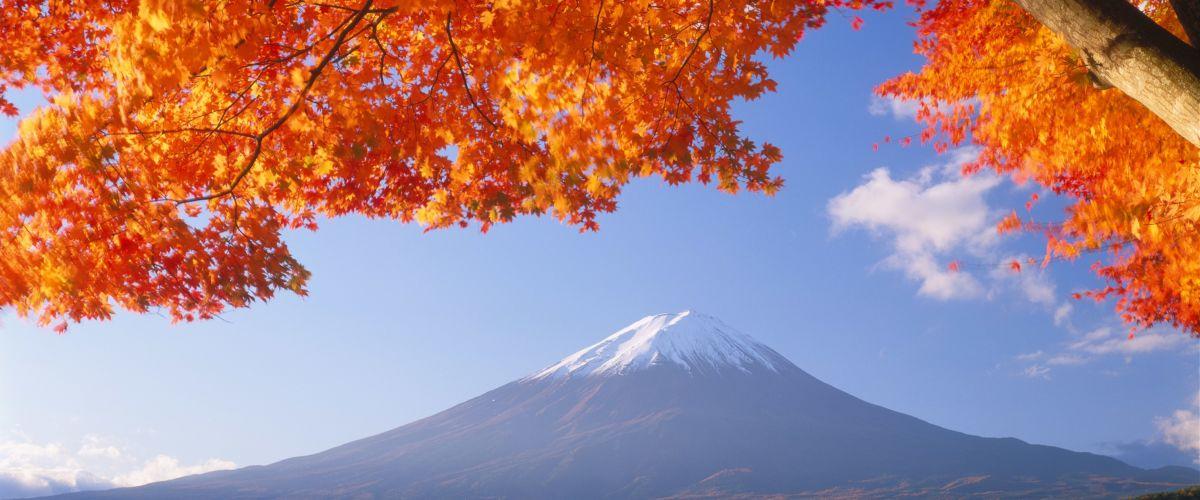 Japan / Foto: Poppe Reisen