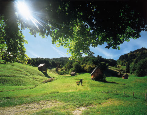 Heuhüttental im Murgtal (c) Zweckverband im Tal der Murg