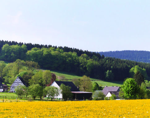 Nordic Walking in Bad Sassendorf