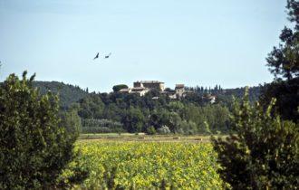 Blick auf das Castell (c) hwtours