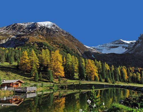 Griererlack ©Naturpark Zillertal