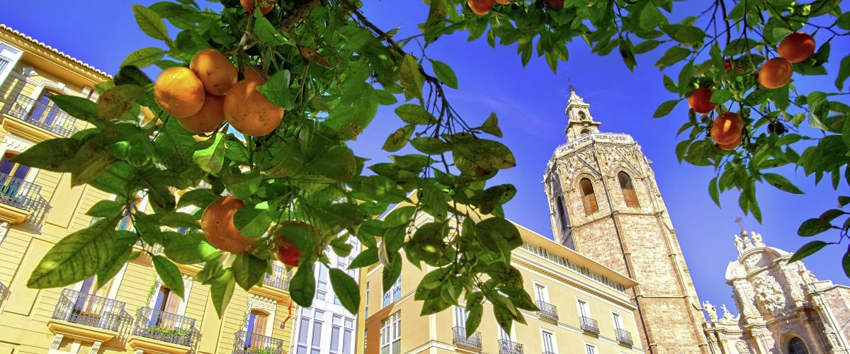 Valencia, Kathedrale, Orangen © Fotolia twindesigner