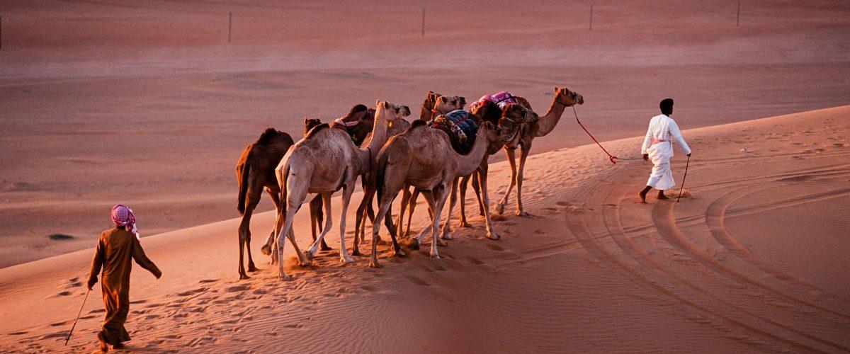 Oman Wahiba (c) D7031tg, Wikimedia Commons