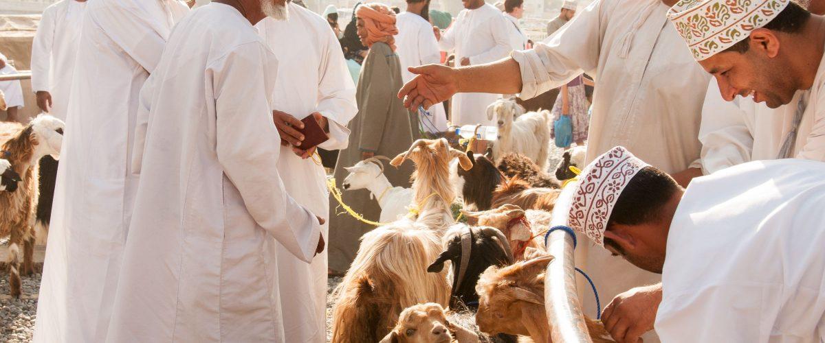 Oman Nizwa Cattle Market (c) Poppe Reisen