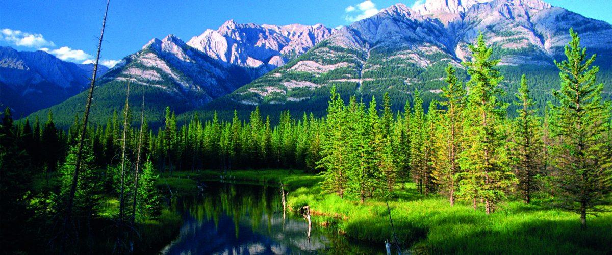Westkanada Rocky Mountains (c) Poppe Reisen