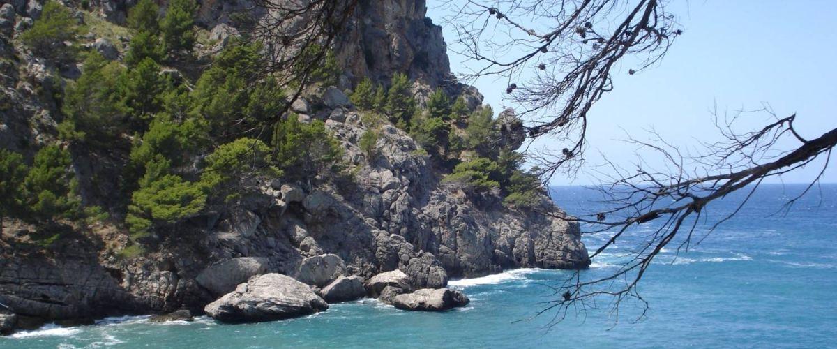 Mallorca (c) reisewelt Teiser + Hüter