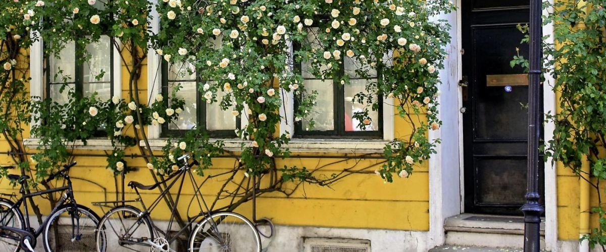 Kopenhagen_c_Fotolia_Elena Zarubina