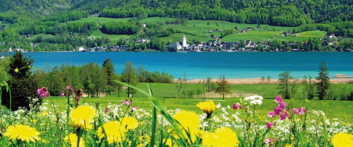 Frühling am Wolfgangsee