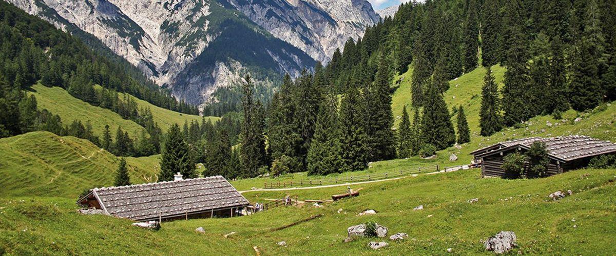 Landschaft Bindalm Muehlsturzhorn (c) Nationalpark Berchtegaden Bayern