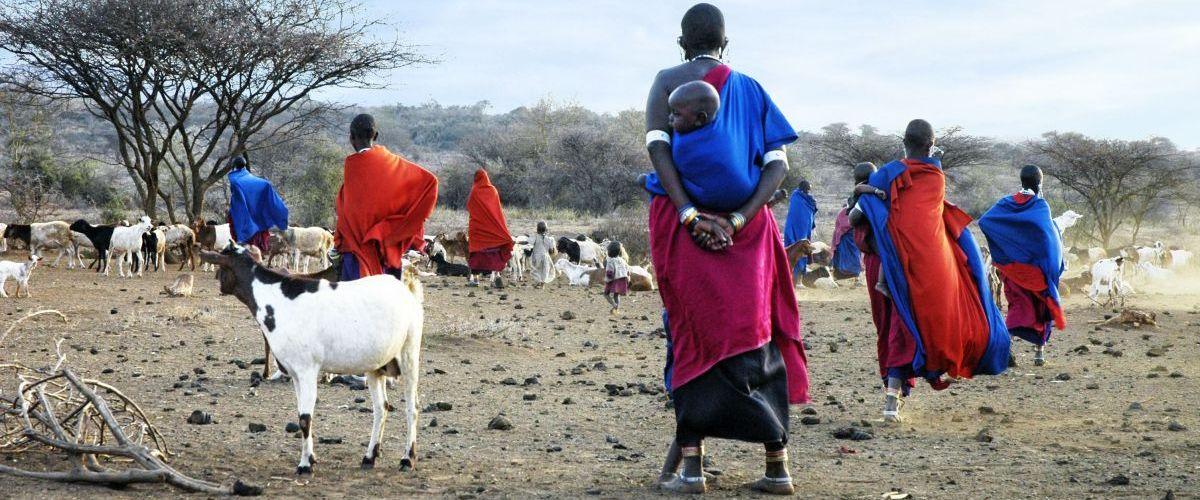Massai © Fotolia_dYdewalle jean