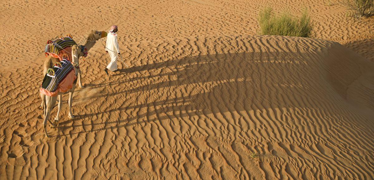 N W_ste in Dubai07 Freigabe DTCM