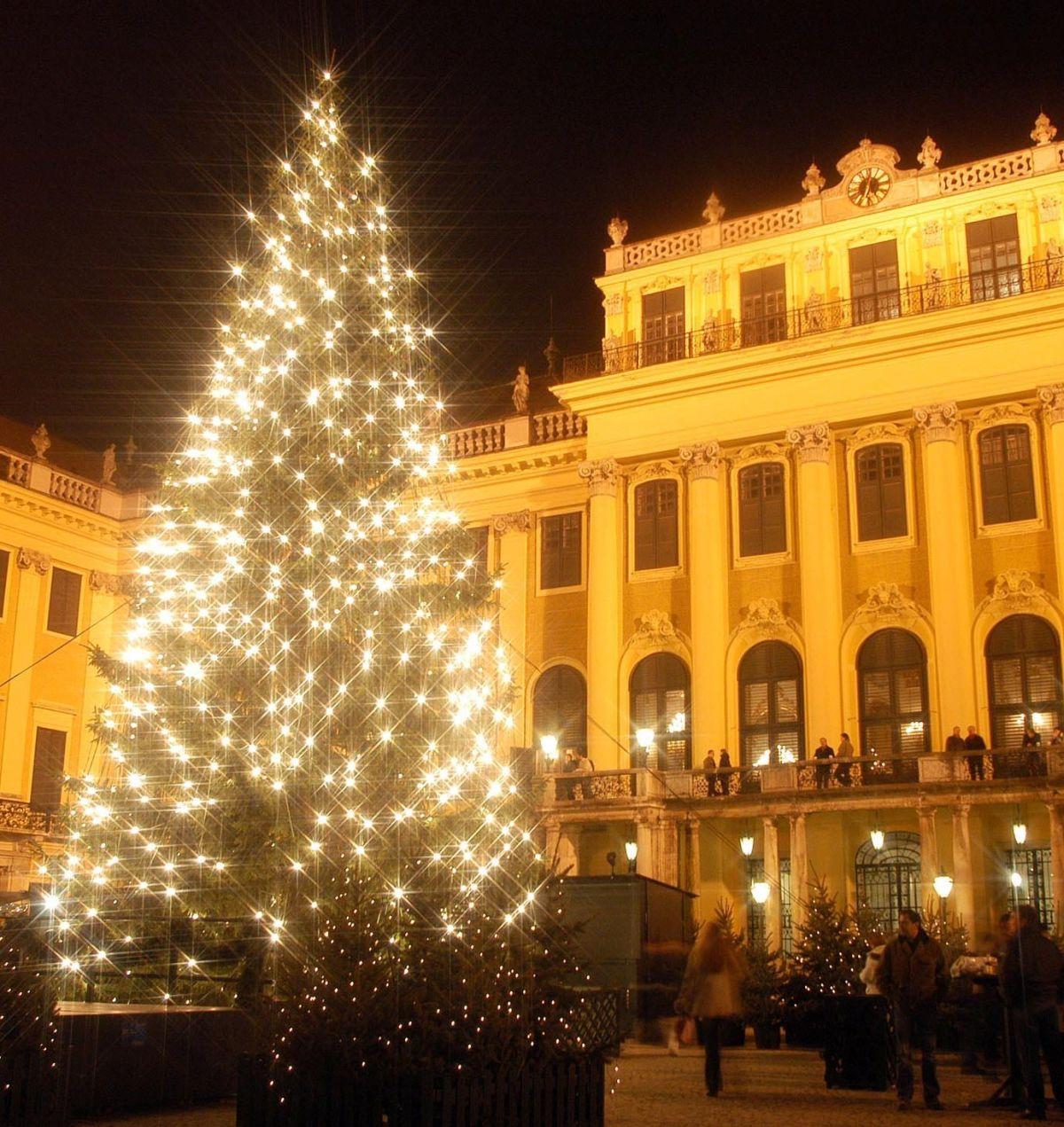 Christbaum und Schloss seitlich nachts © Weihnachtsmarkt.co.at_Gerhard Fally