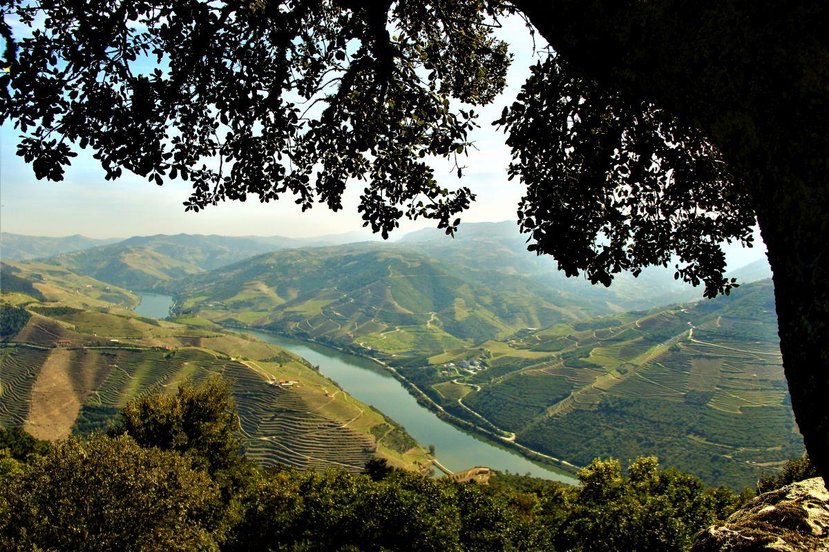 Portugal Douro (c) Pixabay