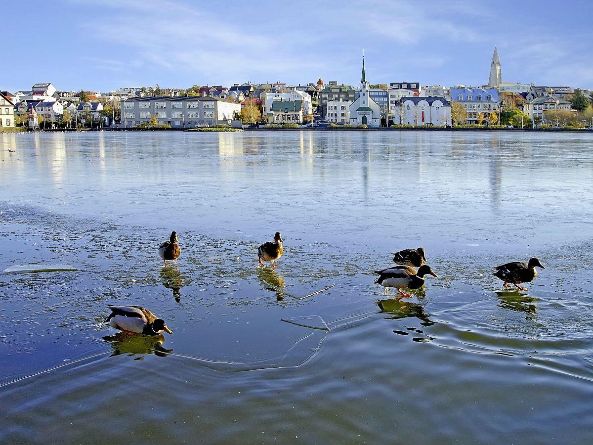 Reykjavik(c)Marco Polo Reisen_Fotolia_Renewer