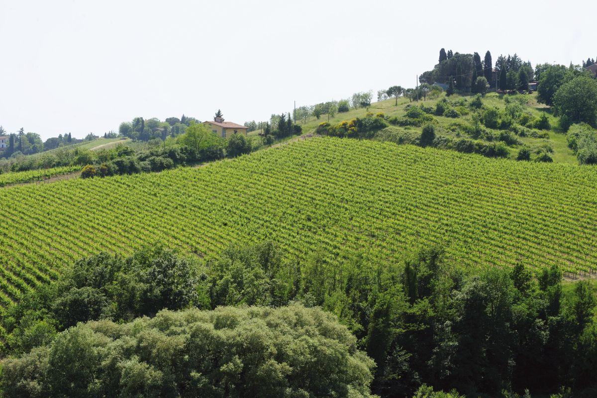 Panorama © Fototeca ENIT Gino Cianci