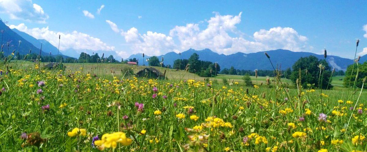 eurobike-radreise-bodensee-königssee-bayerisches-alpenvorland © Eurobike