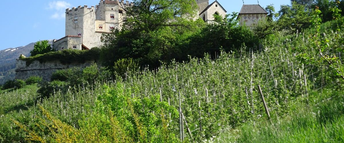 eurohike-garmisch-meran-churburg © eurohike