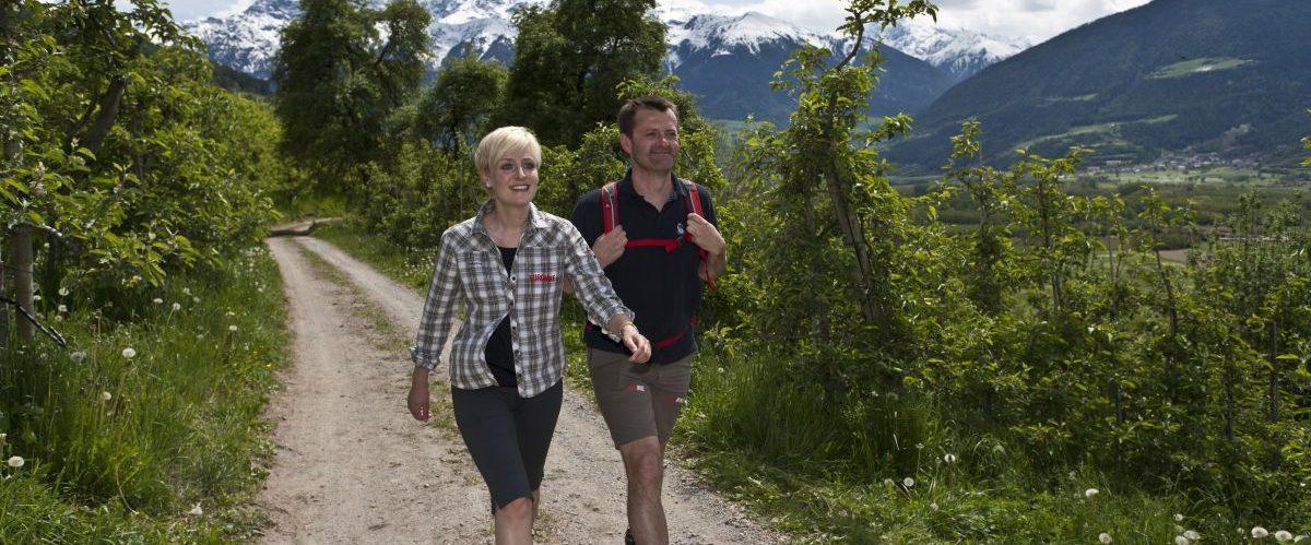 eurohike-garmisch-meran-suedtirol-apfelgarten-wanderer © eurohike