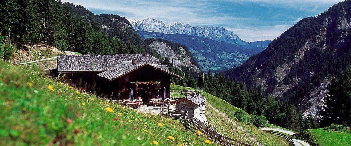 Alm_Copyright_Gasteinertal Tourismus GmbH