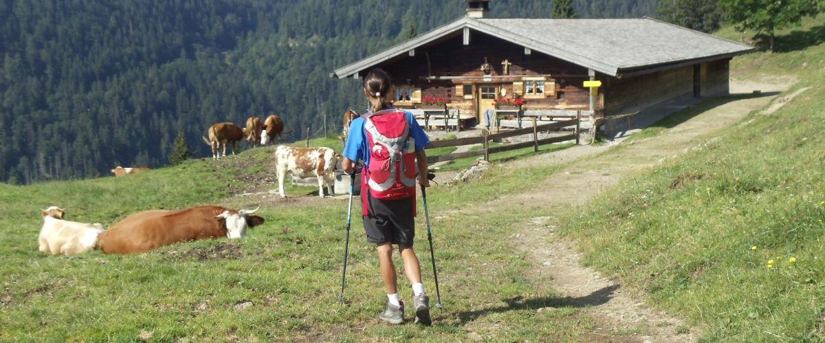 Bayerische Alpen_Alm_Wanderer_1(c)eurohike