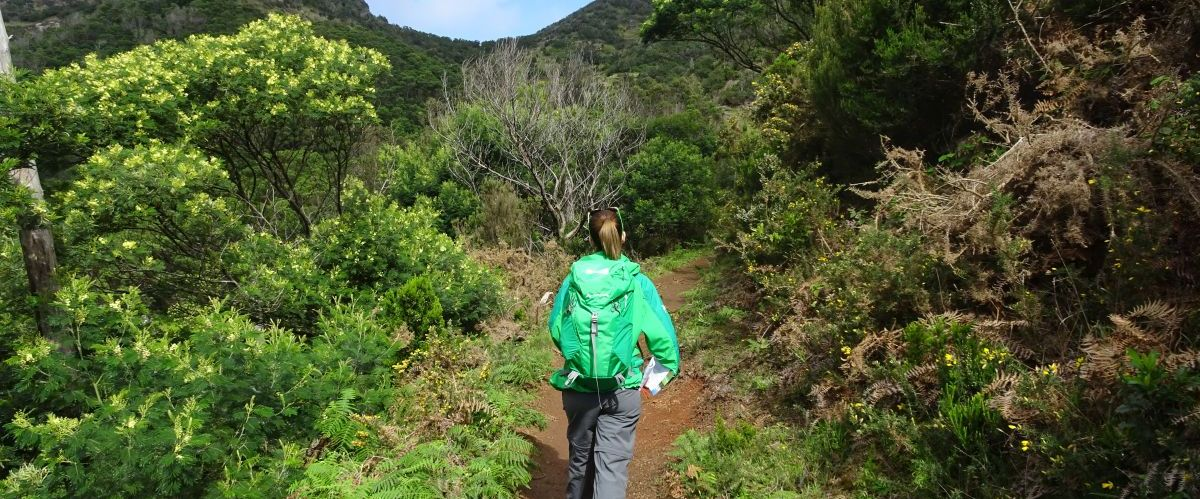 Madeira-Levada-Wanderer-4(c)eurohike