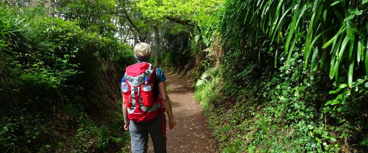 Madeira-Levada-Wanderer-5(c)eurohike