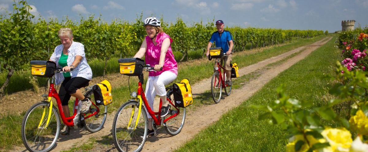 eurobike-radreise-pfaelzer-weinsternfahrt-radfahrer-1
