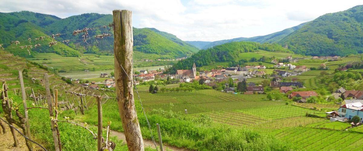 eurohike-wanderreise-welterbesteig-wachau-spitz-kirche (c) eurohike