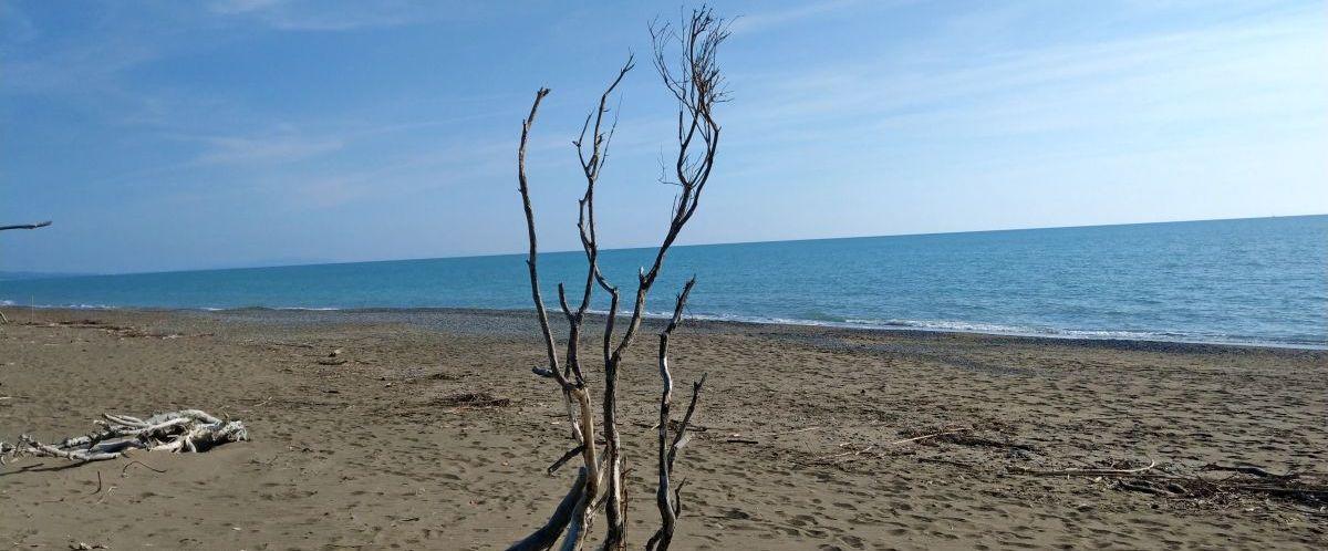 eurohike-wanderreisen-toskana-strand-aeste(c)eurohike
