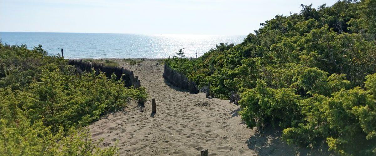 eurohike-wanderreisen-toskana-strandpfad(c)eurohike