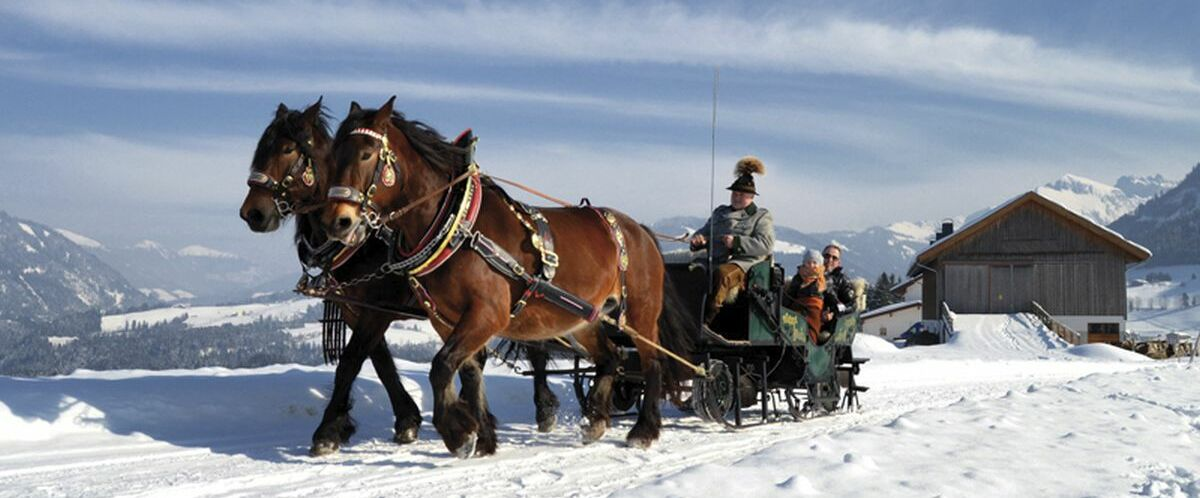 Kutschen_Winter140213-(32) ©Sabine Jacobs
