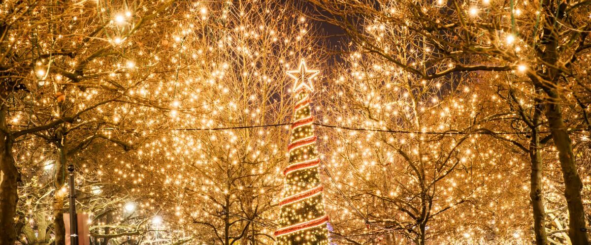 Weihnachtlicher_Kudamm-(c)-visitBerlin-Dagmar_Schwelle